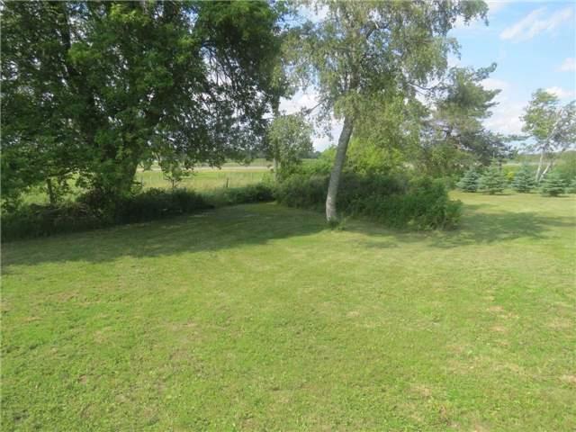 Farm at 156434 Highway 10 Rd, Melancthon, Ontario. Image 9