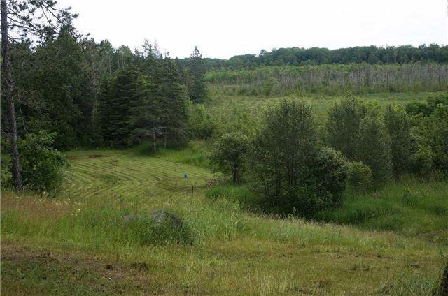 Detached at 456 Crystal Lake Rd, Kawartha Lakes, Ontario. Image 3