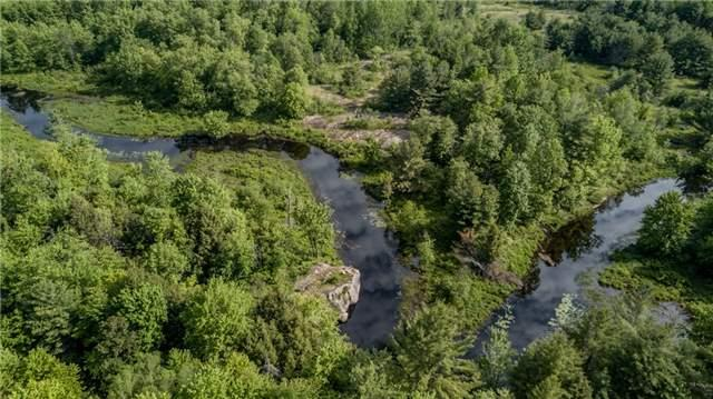 Vacant Land at 341 Monck Rd, Kawartha Lakes, Ontario. Image 12