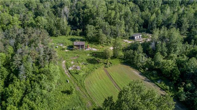 Vacant Land at 341 Monck Rd, Kawartha Lakes, Ontario. Image 14