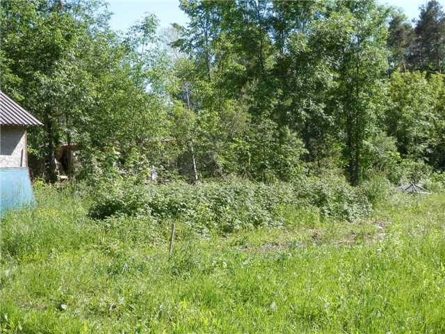 Vacant Land at 341 Monck Rd, Kawartha Lakes, Ontario. Image 6
