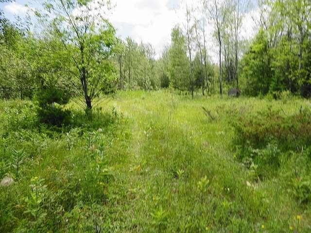 Vacant Land at Ptlt 22 Howard Side Rd, Central Frontenac, Ontario. Image 1