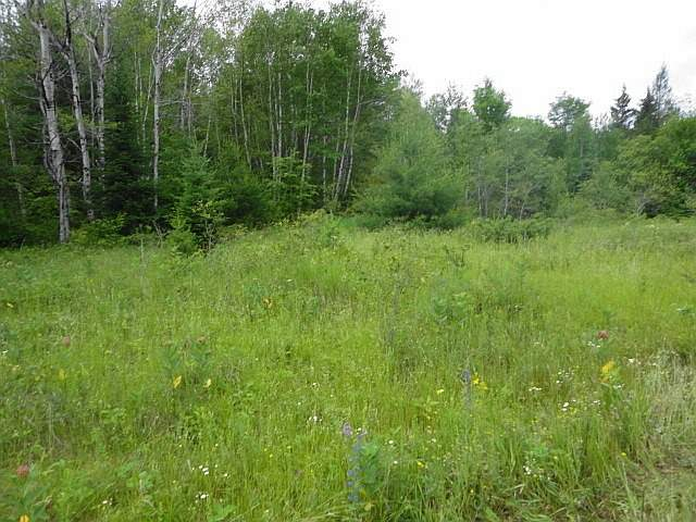Vacant Land at Ptlt 22 Howard Side Rd, Central Frontenac, Ontario. Image 2