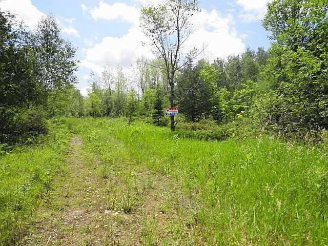 Vacant Land at Ptlt 22 Howard Side Rd, Central Frontenac, Ontario. Image 4