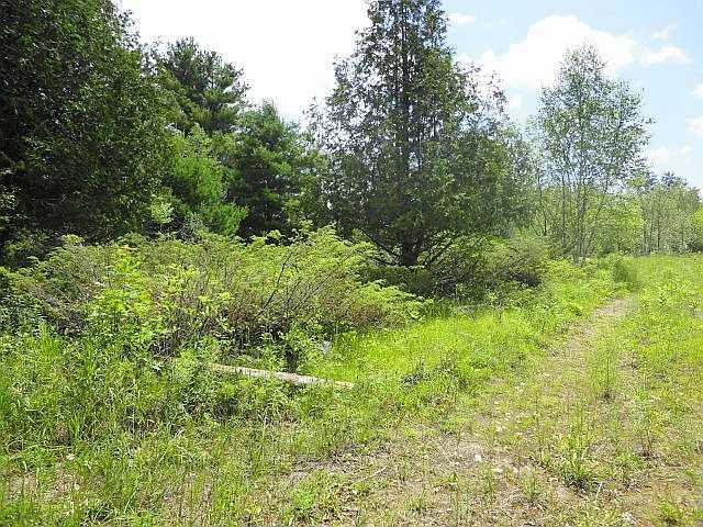 Vacant Land at Ptlt 22 Howard Side Rd, Central Frontenac, Ontario. Image 5