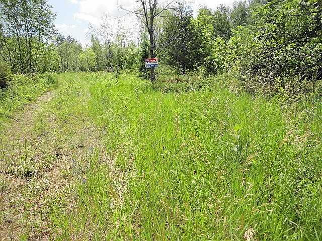 Vacant Land at Ptlt 22 Howard Side Rd, Central Frontenac, Ontario. Image 6