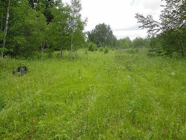 Vacant Land at Ptlt 22 Howard Side Rd, Central Frontenac, Ontario. Image 7