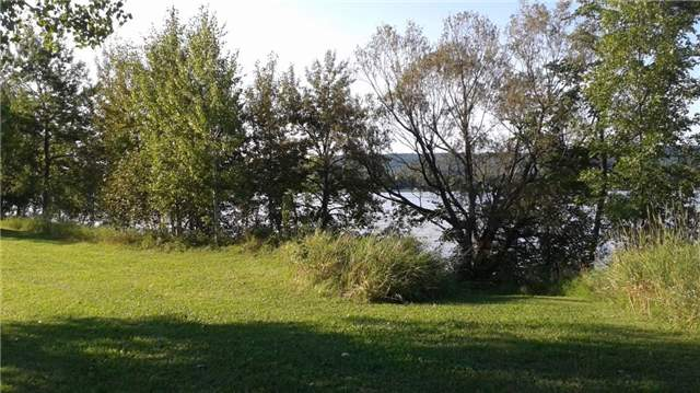 Vacant Land at 971 Concession 1 Rd, Alfred & Plantagenet, Ontario. Image 4