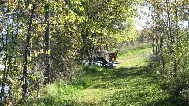 Vacant Land at 971 Concession 1 Rd, Alfred & Plantagenet, Ontario. Image 2
