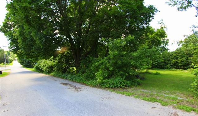 Vacant Land at Lt 7 Munroe St, Kawartha Lakes, Ontario. Image 7