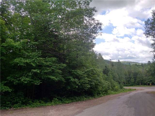 Vacant Land at 0 Wingle Rd, Brudenell, Lyndoch and Ragl, Ontario. Image 4