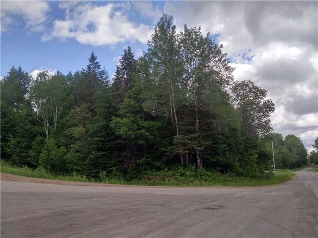 Vacant Land at 0 Wingle Rd, Brudenell, Lyndoch and Ragl, Ontario. Image 5