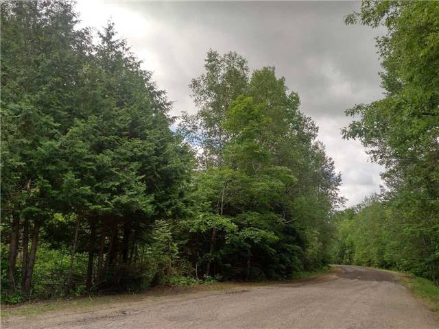 Vacant Land at 00 Wingle Rd, Brudenell, Lyndoch and Ragl, Ontario. Image 4