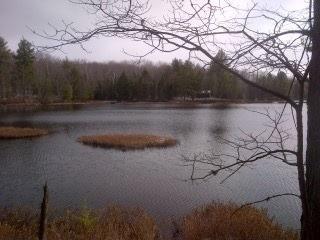 Vacant Land at 0 Miriam Rd, Bracebridge, Ontario. Image 1