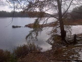 Vacant Land at 1500 Miriam Dr, Bracebridge, Ontario. Image 3