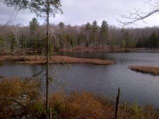 Vacant Land at 1500 Miriam Dr, Bracebridge, Ontario. Image 4