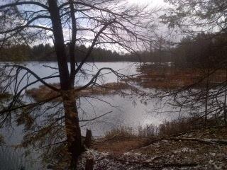 Vacant Land at 1500 Miriam Dr, Bracebridge, Ontario. Image 5