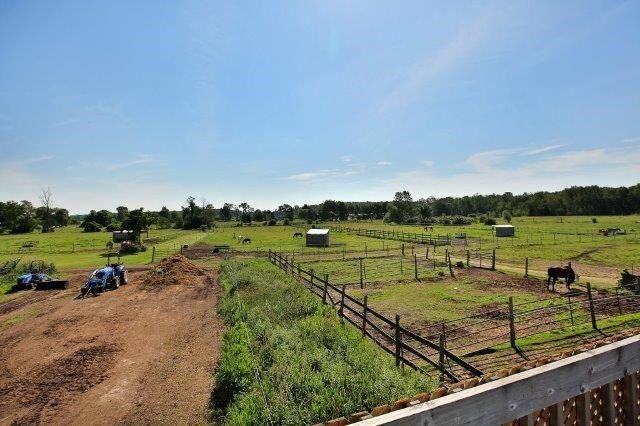 Farm at 1374 5th Concession Rd W, Hamilton, Ontario. Image 13