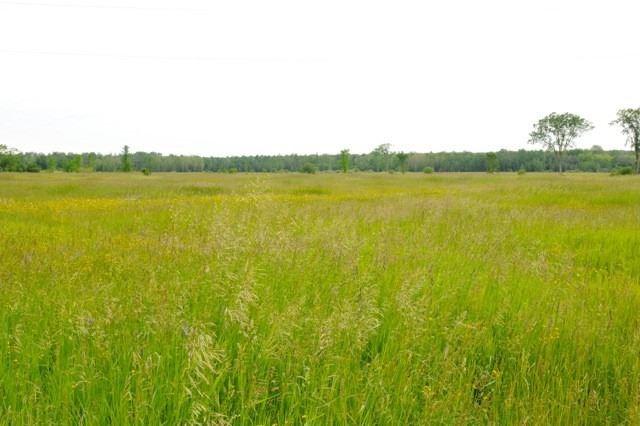 Farm at 1597 Hartley Rd, Kawartha Lakes, Ontario. Image 5