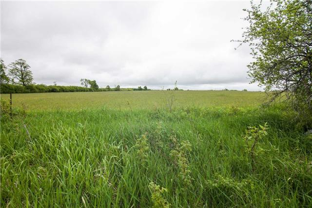 Detached at 384169 20th Sdrd Rd, Amaranth, Ontario. Image 1