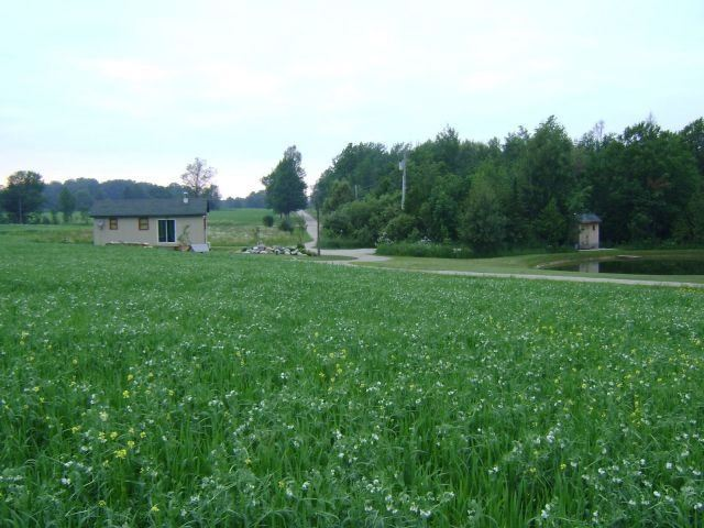 Vacant Land at 7687 Sideroad 2E, Wellington North, Ontario. Image 7