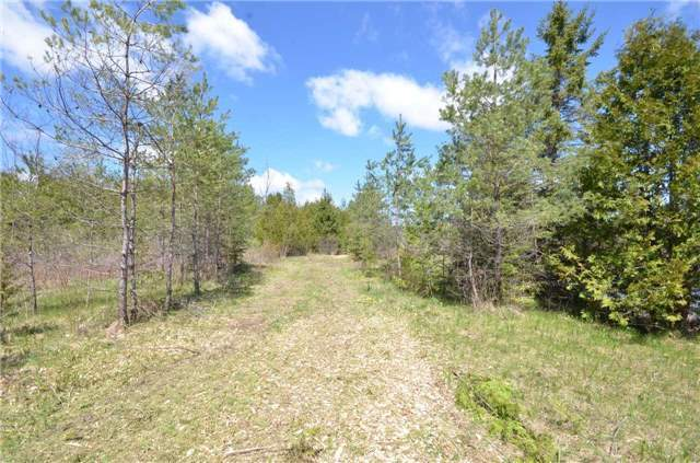 Vacant Land at 00 First Line, Erin, Ontario. Image 12