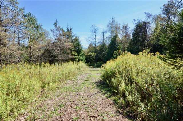 Vacant Land at 00 First Line, Erin, Ontario. Image 15