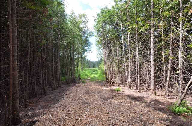 Vacant Land at 00 First Line, Erin, Ontario. Image 7