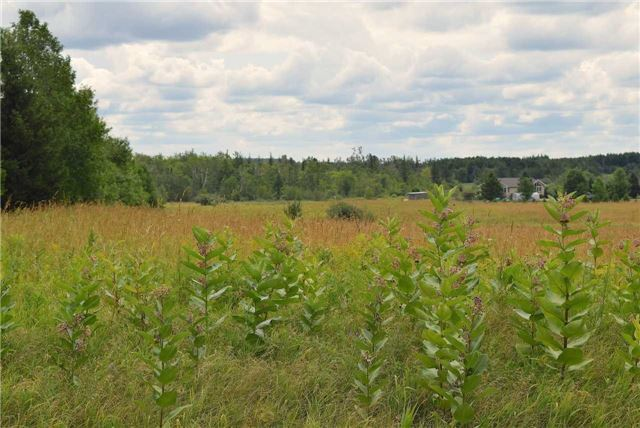 Vacant Land at 064285 County Road 3 Rd, East Garafraxa, Ontario. Image 12