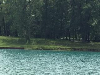 Vacant Land at 4729 Riverside Dr, St. Clair, Ontario. Image 5