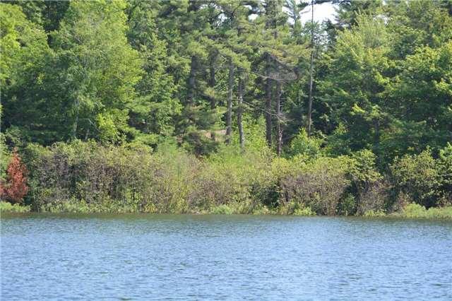 Vacant Land at 6 B207 (Wahsoune) Isl, The Archipelago, Ontario. Image 2