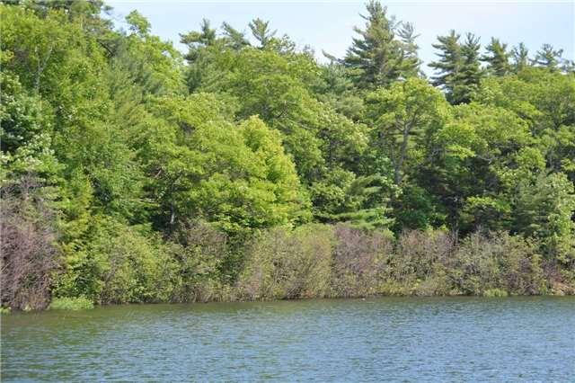 Vacant Land at 6 B207 (Wahsoune) Isl, The Archipelago, Ontario. Image 5