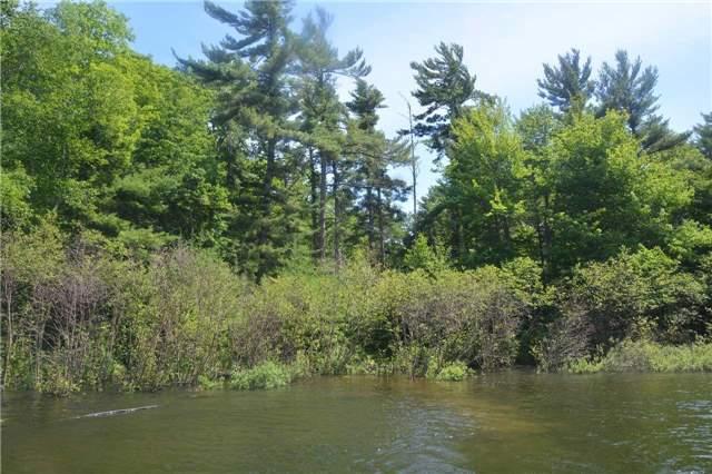 Vacant Land at 4 B207 (Wahsoune) Isl, Muskoka Lakes, Ontario. Image 1
