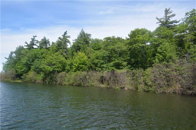 Vacant Land at 4 B207 (Wahsoune) Isl, Muskoka Lakes, Ontario. Image 10
