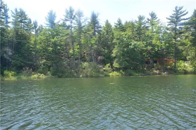 Vacant Land at 4 B207 (Wahsoune) Isl, Muskoka Lakes, Ontario. Image 11