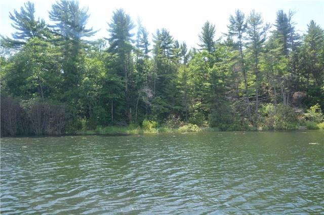 Vacant Land at 4 B207 (Wahsoune) Isl, Muskoka Lakes, Ontario. Image 12