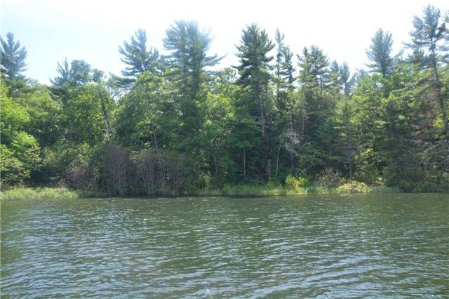 Vacant Land at 4 B207 (Wahsoune) Isl, Muskoka Lakes, Ontario. Image 13