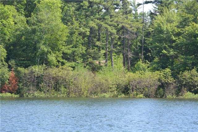 Vacant Land at 4 B207 (Wahsoune) Isl, The Archipelago, Ontario. Image 4