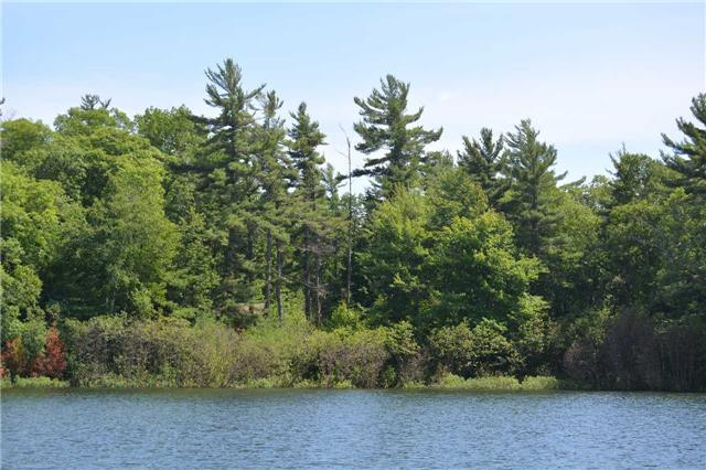 Vacant Land at 4 B207 (Wahsoune) Isl, The Archipelago, Ontario. Image 5