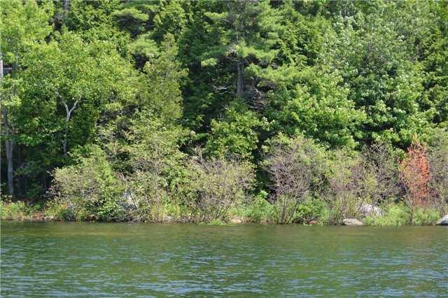 Vacant Land at 4 B207 (Wahsoune) Isl, The Archipelago, Ontario. Image 7
