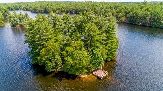 Cottage at 3 Island 2, Havelock-Belmont-Methuen, Ontario. Image 12