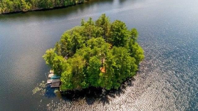 Cottage at 3 Island 2, Havelock-Belmont-Methuen, Ontario. Image 11