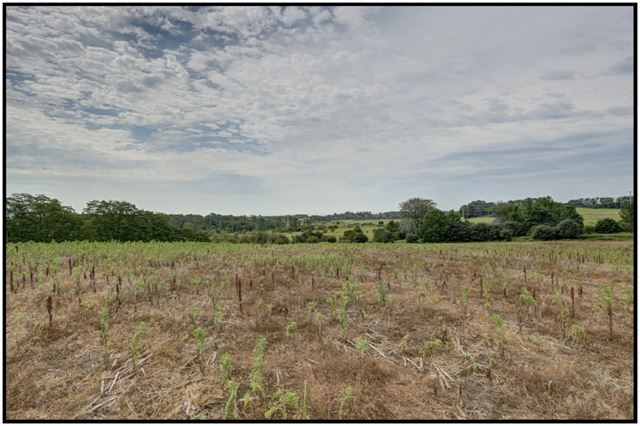 Vacant Land at Pt Lt 9 Workman Rd, Cobourg, Ontario. Image 3