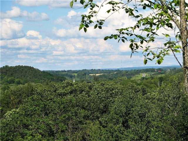 Vacant Land at Lt13 Banta Rd, Trent Hills, Ontario. Image 7