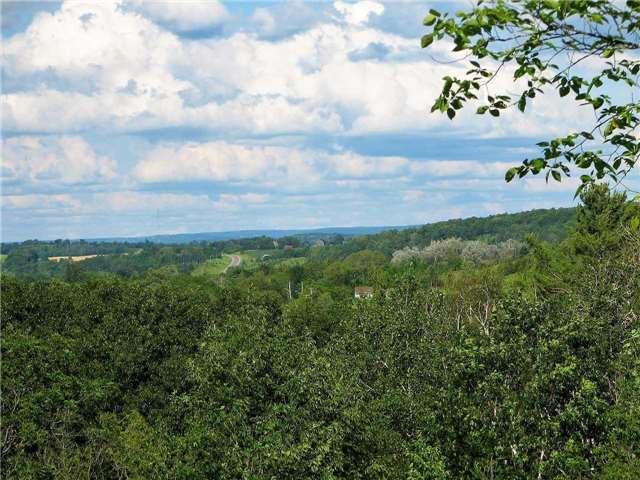 Vacant Land at Lt13 Banta Rd, Trent Hills, Ontario. Image 9
