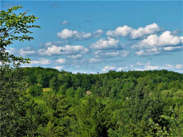 Vacant Land at Lt13 Banta Rd, Trent Hills, Ontario. Image 11
