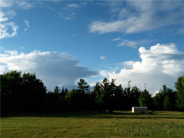 Vacant Land at Lt13 Banta Rd, Trent Hills, Ontario. Image 12