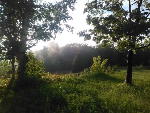 Vacant Land at Lt13 Banta Rd, Trent Hills, Ontario. Image 13