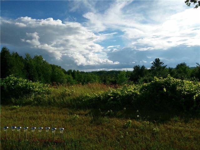 Vacant Land at Lt13 Banta Rd, Trent Hills, Ontario. Image 14