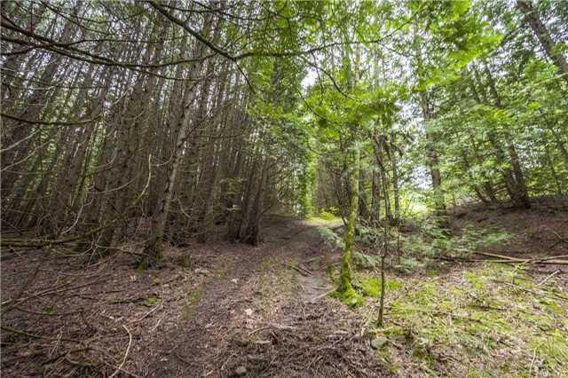 Vacant Land at Lt13 Banta Rd, Trent Hills, Ontario. Image 3